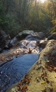 cascatelle nella Foresta di Sant'Antonio