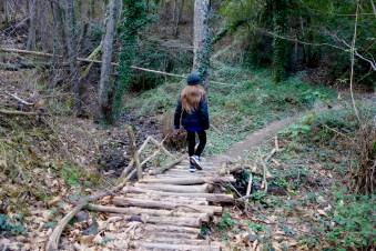 Il sentiero verso Pietramarina