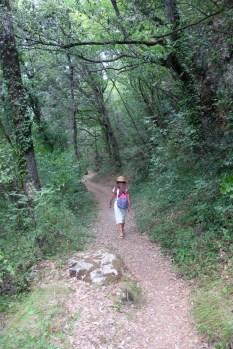 Il sentiero per il fiume