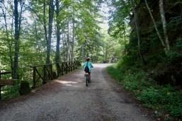 Sul percorso Campigna Cullacce