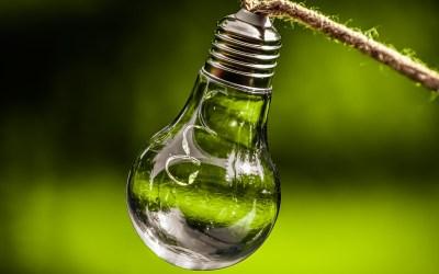 Nachhaltigkeit und Qualität als Basis des zukünftigen Erfolgs