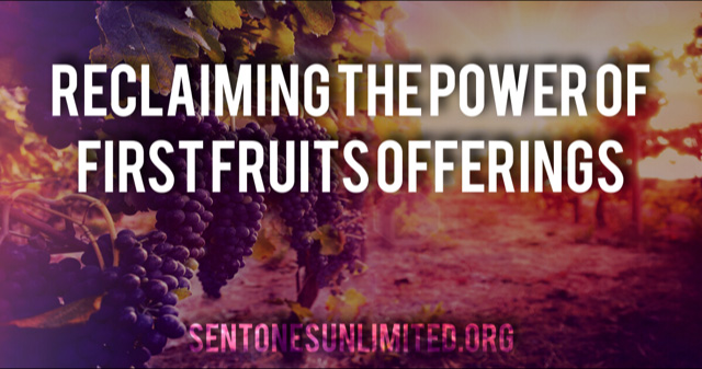 reclaiming the power of first fruits
