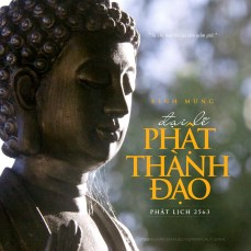 PHAT THANH DAO 5