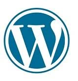 Wordpress website design solutions