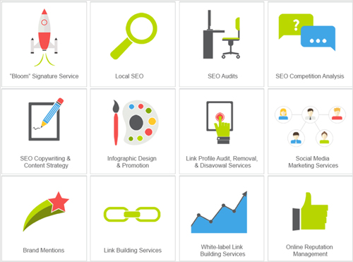 SEO Agency Services
