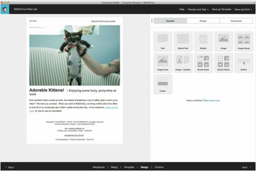 mailchimp template design