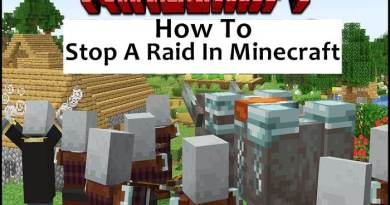 How To Stop A Raid In Minecraft?