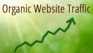 Organic Site Traffic