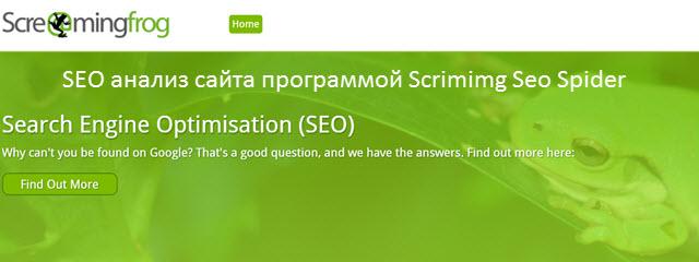 SEO анализ сайта программой Scrimimg Seo Spider