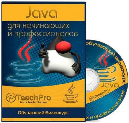 Java для начинающих и профессионалов. Обучающий видеокурс (2006)