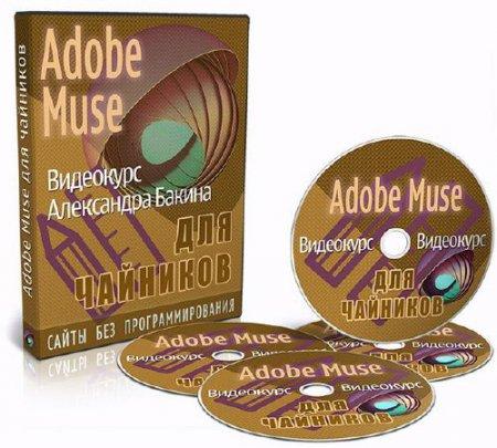 Adobe Muse для чайников - версия VIP. Видеокурс (2014)