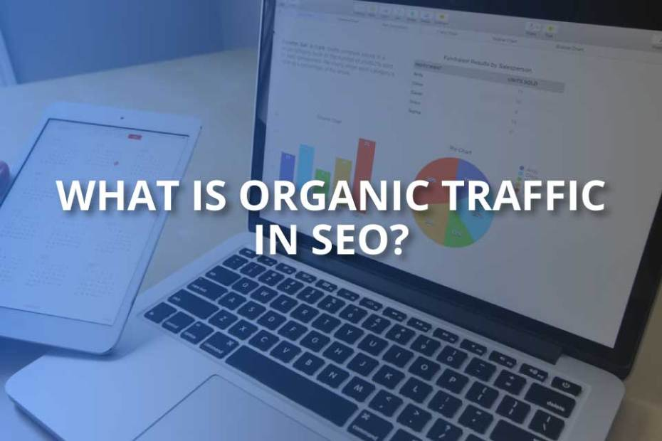 what is organic traffic in seo