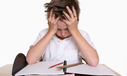 Le tutorat repose-t-il sur le dos des profs ?