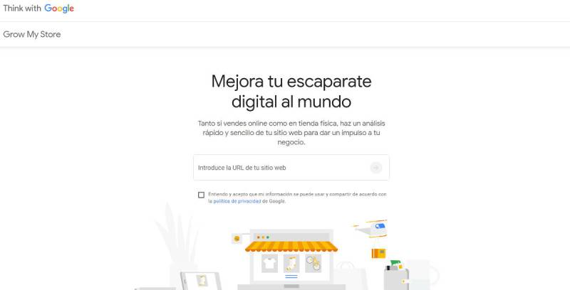 Google Grow My Store.