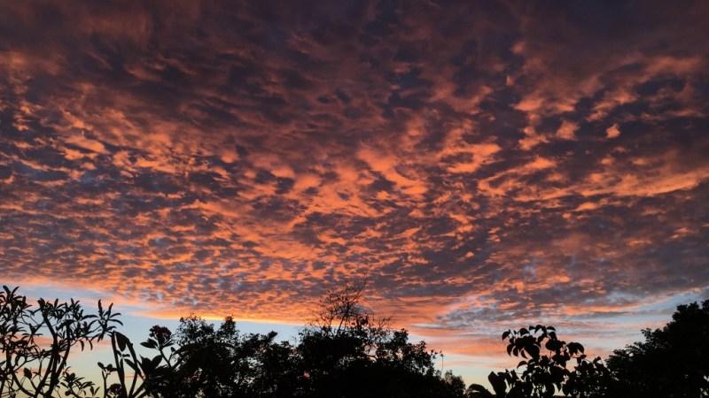 Matahari Si Pengganti Pilu