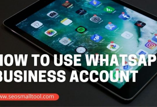 How to Use WhatsApp Business Account