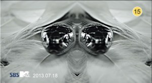 20130720_seoulbeats_beast2