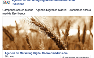 CONSULTOR SEO EN MADRID