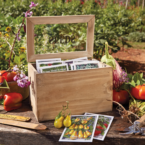 Seed Packet Box with Heirloom Vegetable Seeds