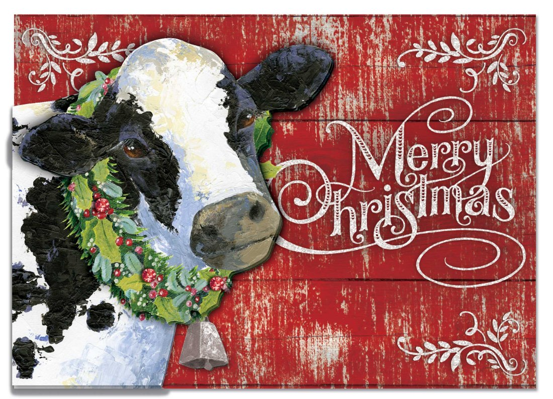 Joy To The Farm Boxed Cards Christmas Punch Studio