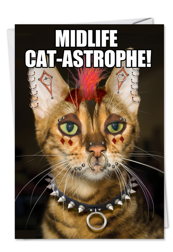 Punk Cat Redrocket Birthday Card Nobleworks