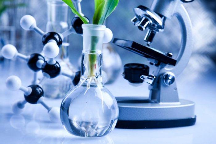Contoh dan Macam-macam Bioteknologi