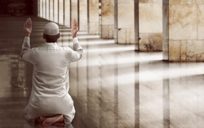 Tujan Aqiqah dan Qurban