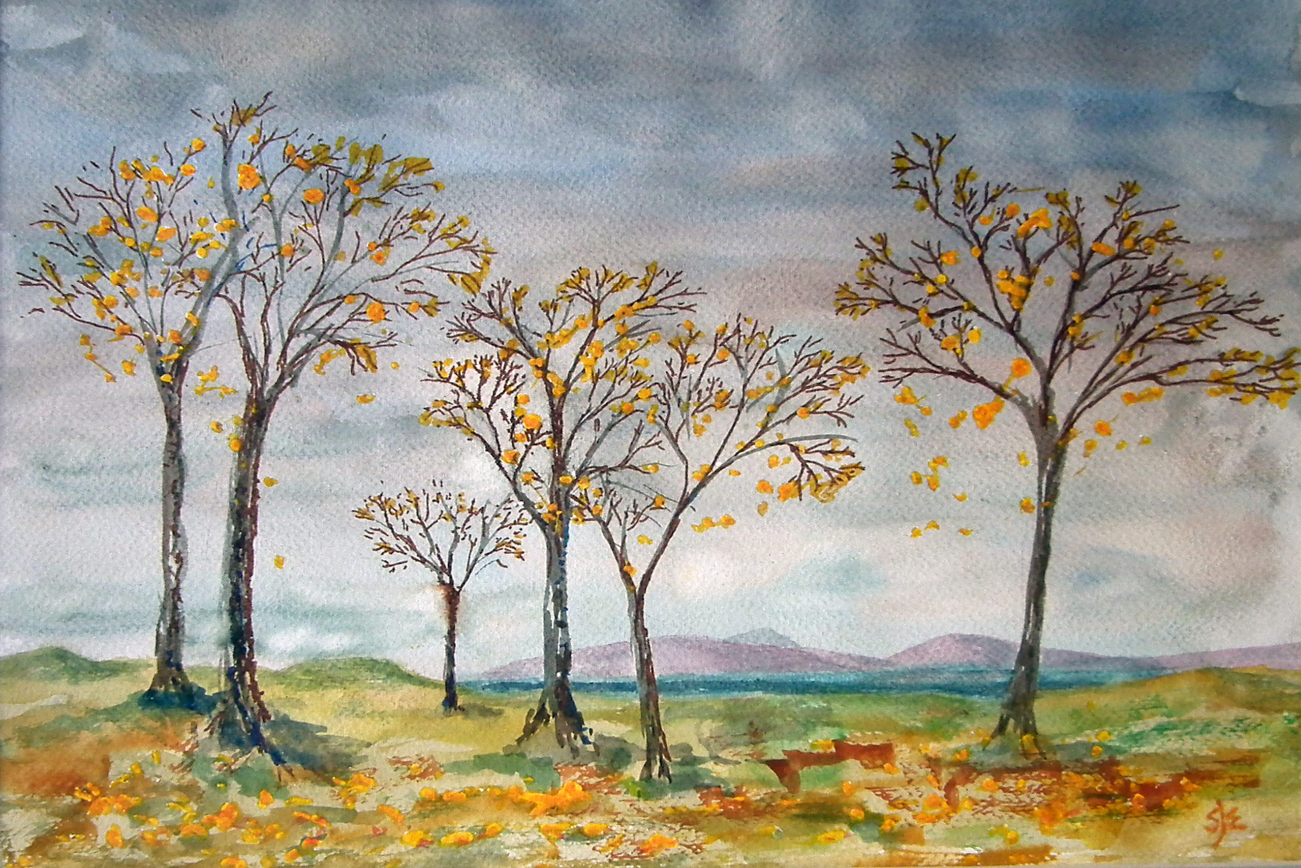 Autumn trees with yellow leaves