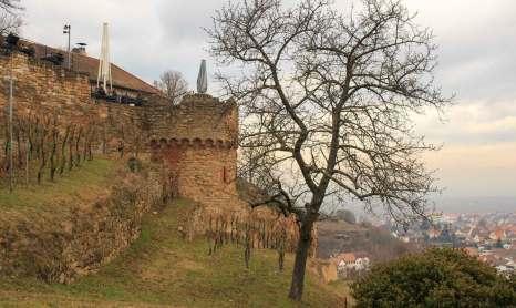 Eckkopf Wachtenburg