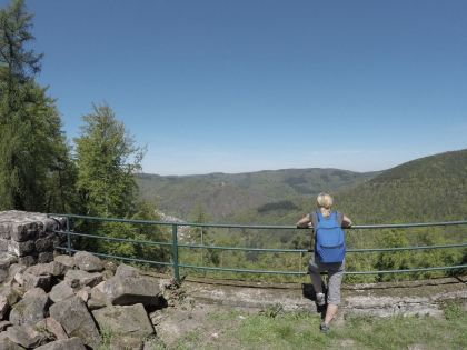 Wandern Pfalz Pfälzerwald