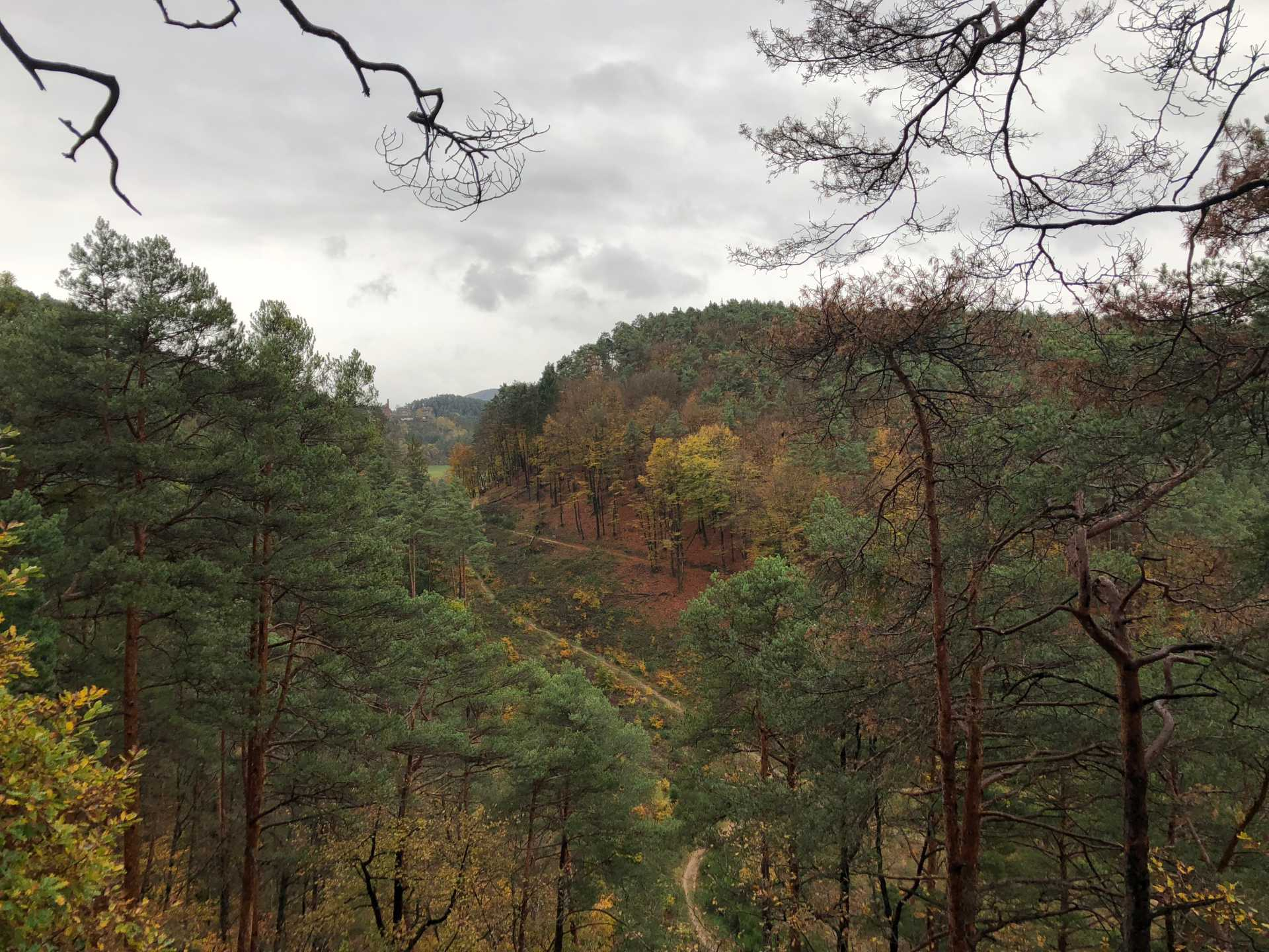 Dahner Rundwanderweg Pfalz