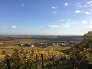 Leinsweiler Madenburg Pfalz