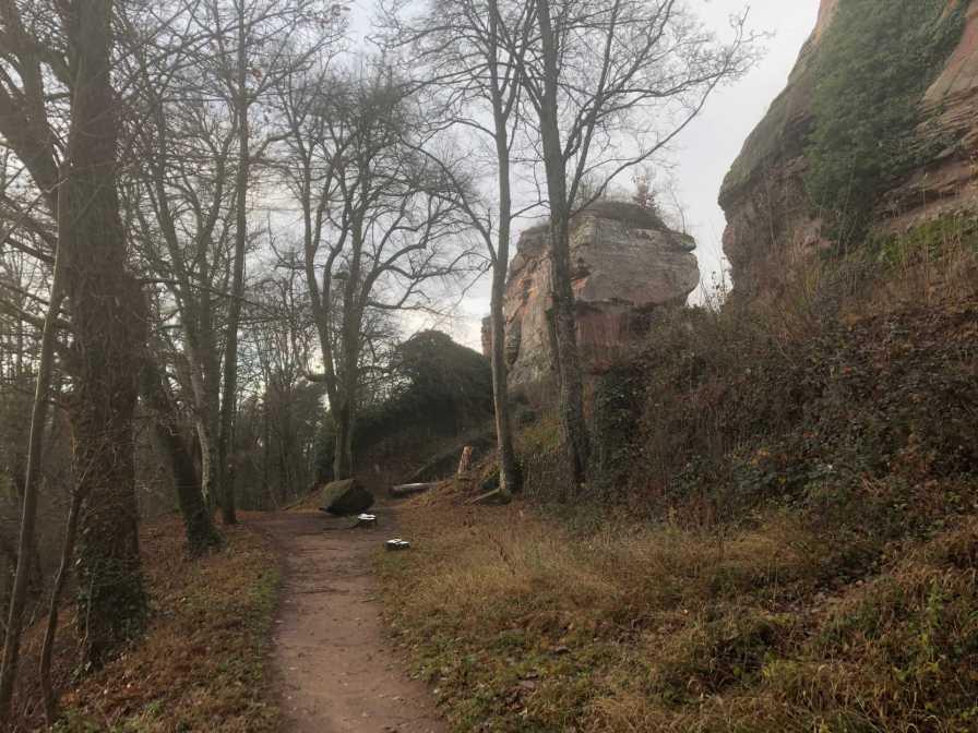 Bärensteig Pfalz