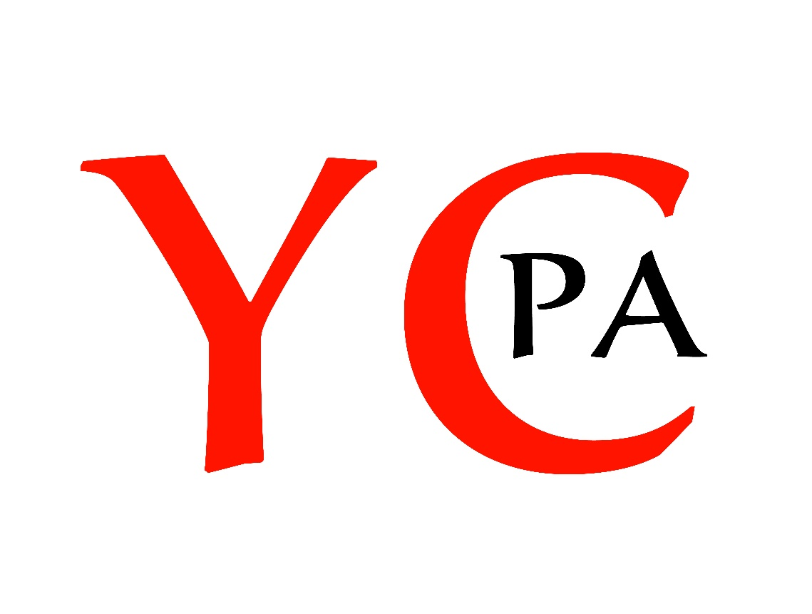 华裔青年专业者协会成功举办2021年度幽兰线上晚会