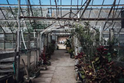 as-dos-pueblos-orchid-farm-wedding-0448