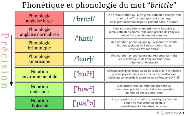"""Différences entre la phonétique et la phonologie du mot anglais """"brittle"""""""
