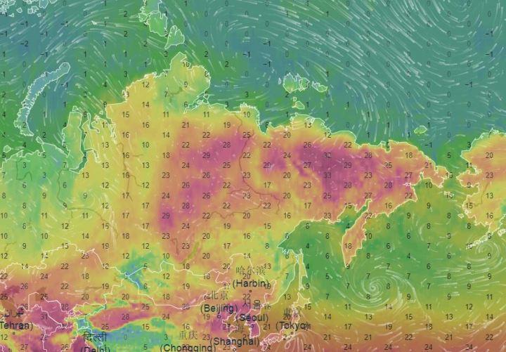Carte des températures en Sibérie le 22 juin 2020.