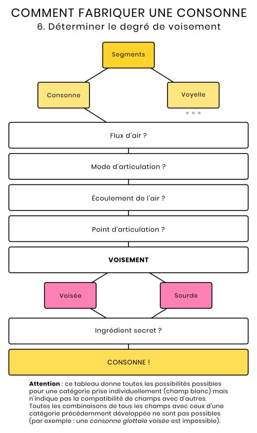 Schéma du voisement