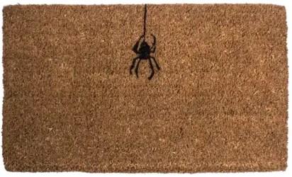 spider-doormat