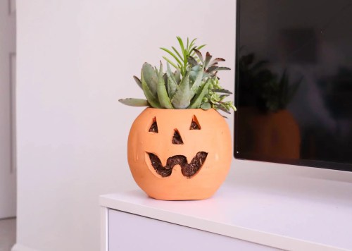 A ceramic pumpkin from Home Depot with succulents inside it