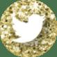MustardandMint_SocialMediaIcons_64px_GoldGlitter-11