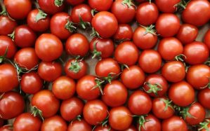 red tomatoes on board