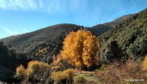 senderismo Sierra Nevada 1 SERAC COMPAÑÍA DE GUÍAS