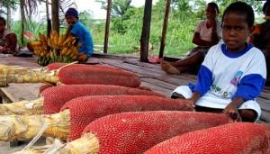 80-Hak-Paten-Ilmuwan-Indonesia-Ini-Terpaksa-dilepas