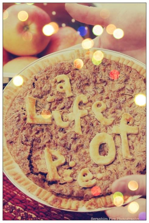 LifeofPie_Blog111