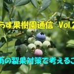 せらす果樹園通信 Vol.20 梅雨の裂果対策で考えること。