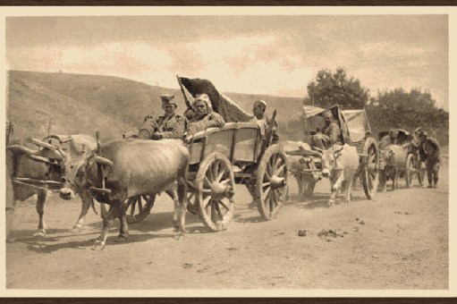 Српска војска током рата