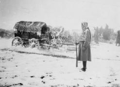 Српска војска током повлачења ка јадранској обали у Албанији 1915,