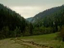 Пут који води у кањон (оне стене горе су његове литице)