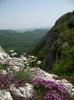 Док мириси планинског цвећа улазе у поре